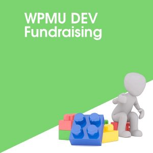 WPMU DEV Fundraising